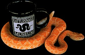 American International Rattlesnake Museum